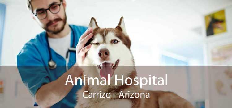 Animal Hospital Carrizo - Arizona