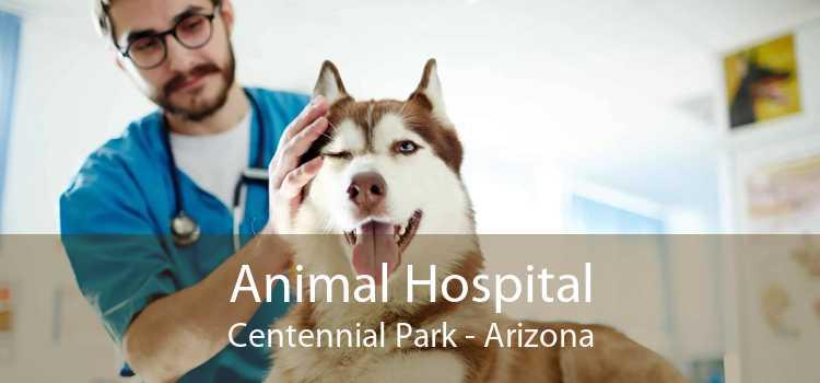 Animal Hospital Centennial Park - Arizona
