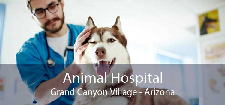 Animal Hospital Grand Canyon Village - Arizona