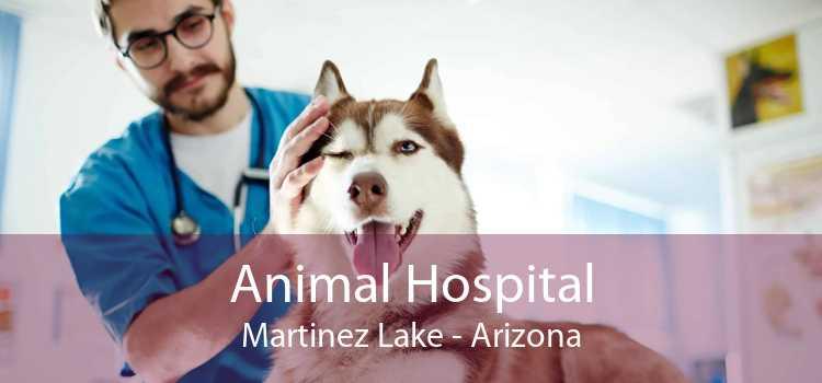 Animal Hospital Martinez Lake - Arizona