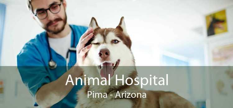 Animal Hospital Pima - Arizona