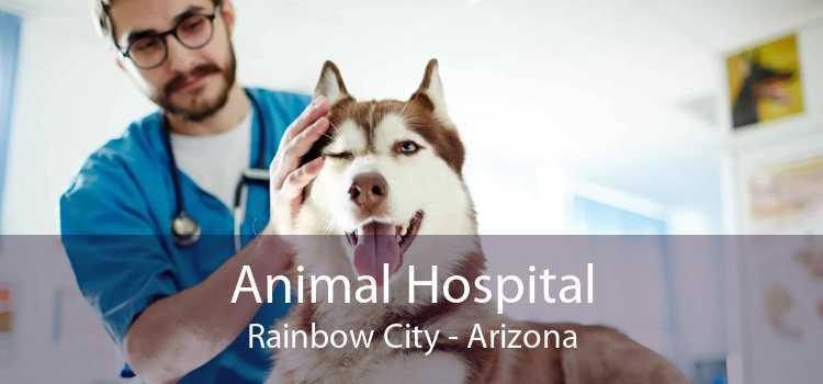 Animal Hospital Rainbow City - Arizona