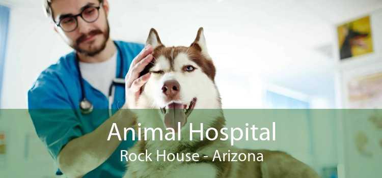 Animal Hospital Rock House - Arizona