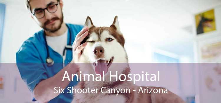 Animal Hospital Six Shooter Canyon - Arizona