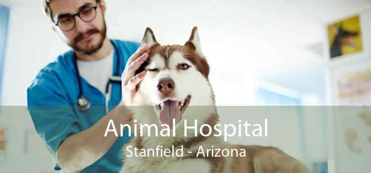 Animal Hospital Stanfield - Arizona