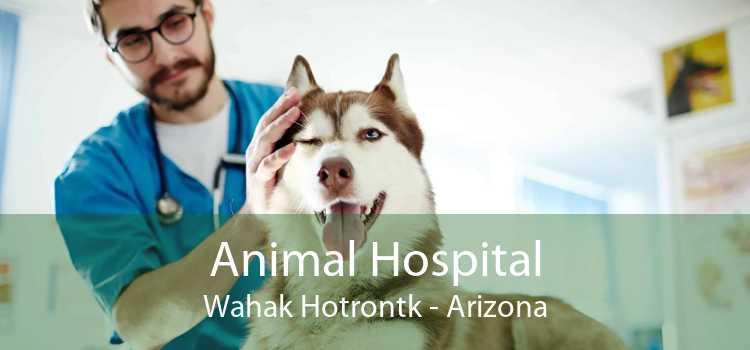 Animal Hospital Wahak Hotrontk - Arizona