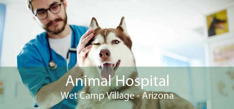 Animal Hospital Wet Camp Village - Arizona