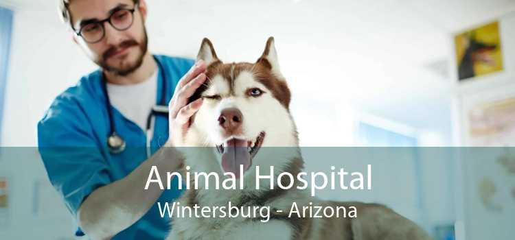 Animal Hospital Wintersburg - Arizona