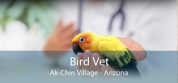 Bird Vet Ak-Chin Village - Arizona