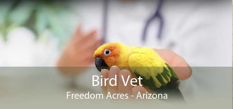 Bird Vet Freedom Acres - Arizona