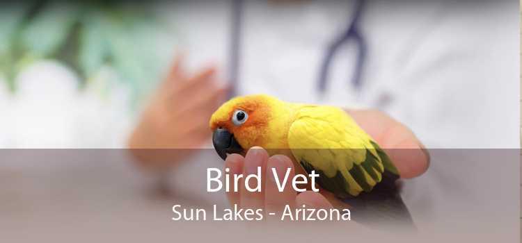 Bird Vet Sun Lakes - Arizona