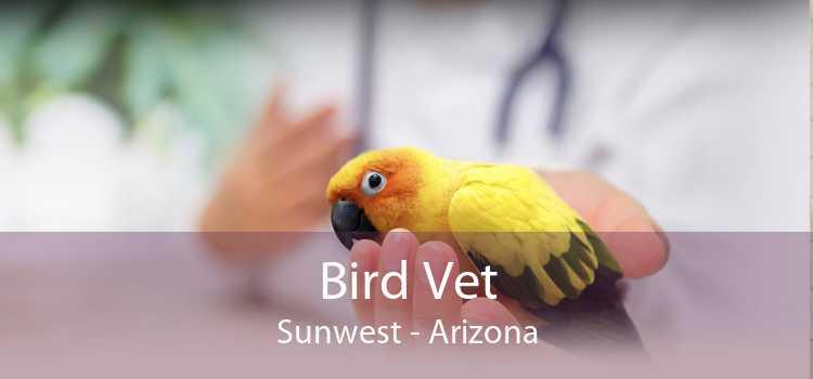 Bird Vet Sunwest - Arizona