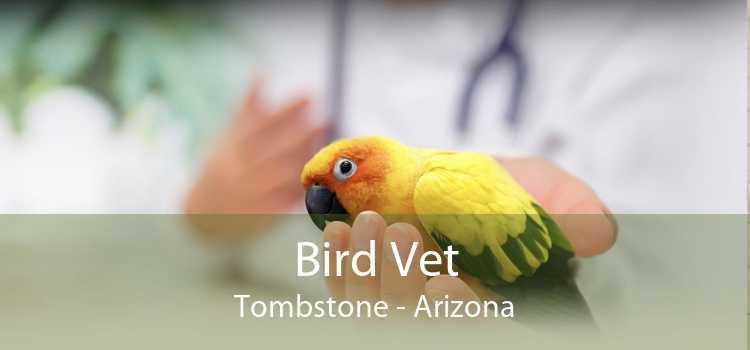 Bird Vet Tombstone - Arizona