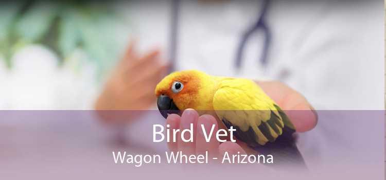 Bird Vet Wagon Wheel - Arizona