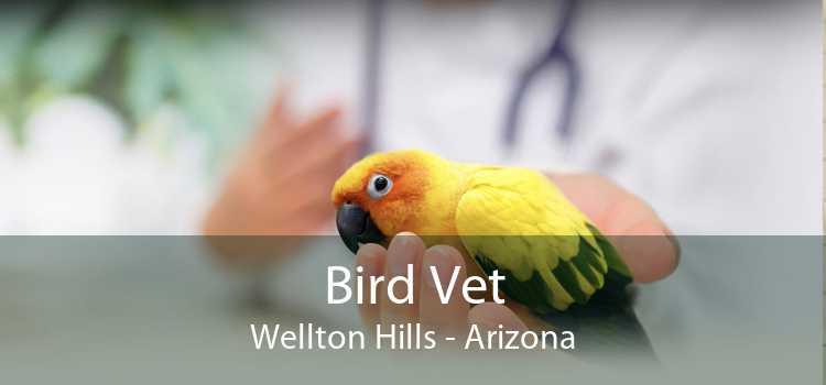 Bird Vet Wellton Hills - Arizona