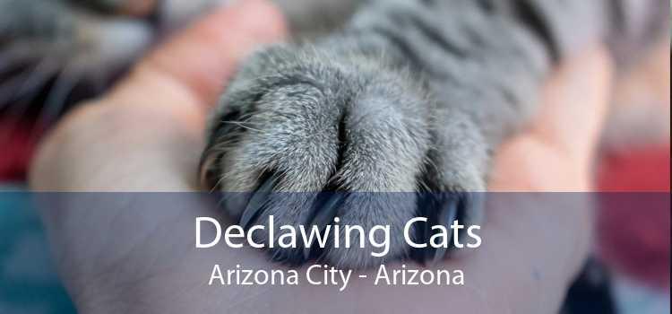 Declawing Cats Arizona City - Arizona