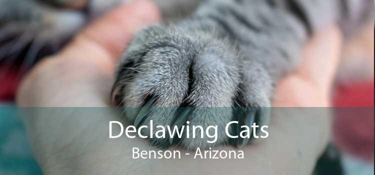 Declawing Cats Benson - Arizona