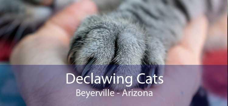 Declawing Cats Beyerville - Arizona