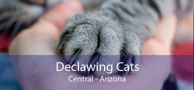Declawing Cats Central - Arizona