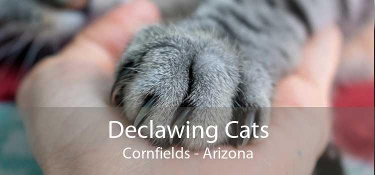 Declawing Cats Cornfields - Arizona
