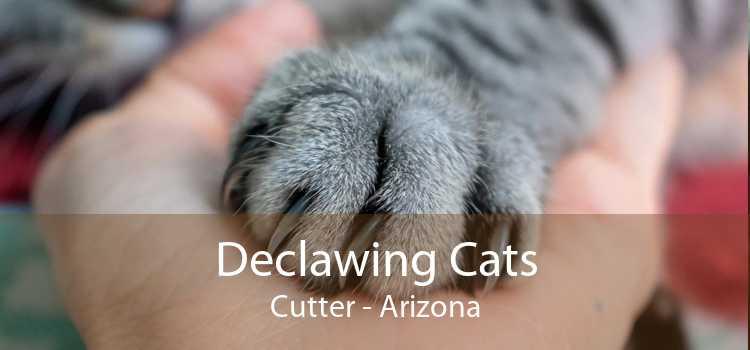 Declawing Cats Cutter - Arizona