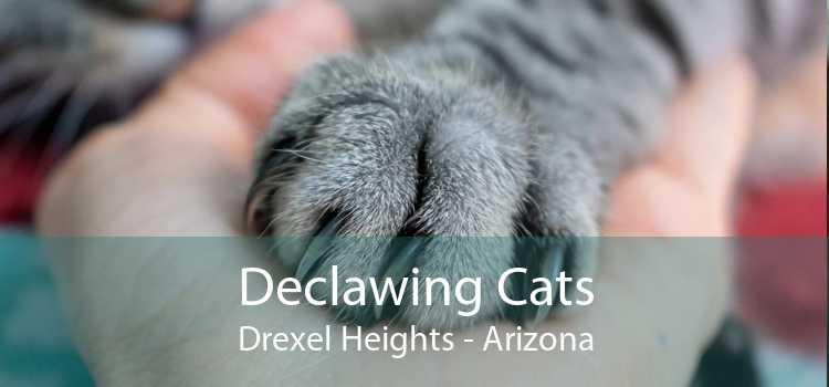 Declawing Cats Drexel Heights - Arizona