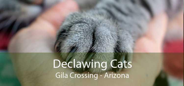 Declawing Cats Gila Crossing - Arizona
