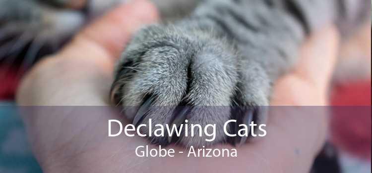 Declawing Cats Globe - Arizona