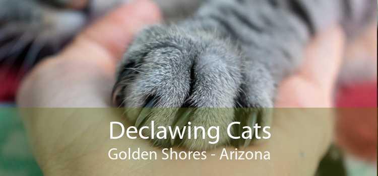 Declawing Cats Golden Shores - Arizona