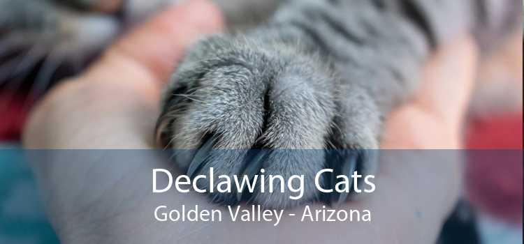 Declawing Cats Golden Valley - Arizona