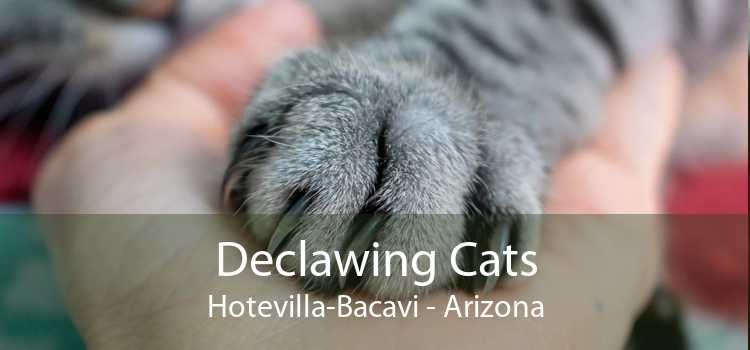 Declawing Cats Hotevilla-Bacavi - Arizona