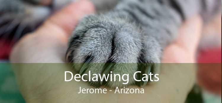 Declawing Cats Jerome - Arizona