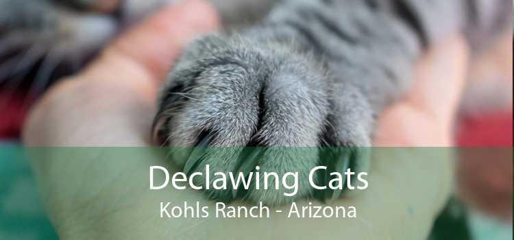 Declawing Cats Kohls Ranch - Arizona