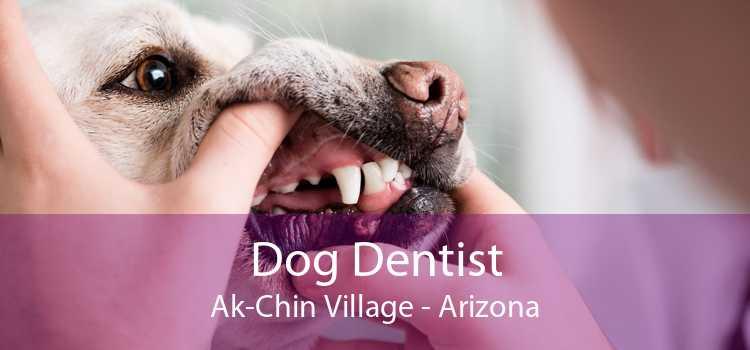 Dog Dentist Ak-Chin Village - Arizona