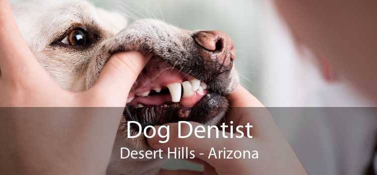 Dog Dentist Desert Hills - Arizona