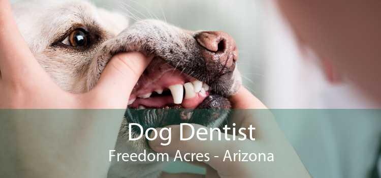 Dog Dentist Freedom Acres - Arizona