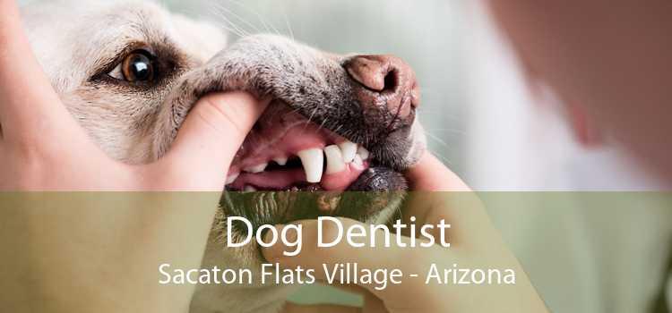 Dog Dentist Sacaton Flats Village - Arizona