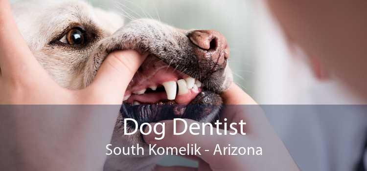 Dog Dentist South Komelik - Arizona