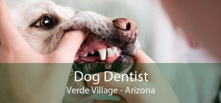 Dog Dentist Verde Village - Arizona