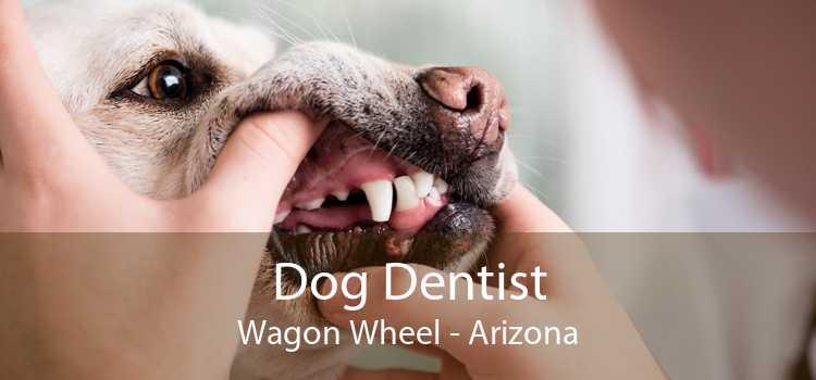 Dog Dentist Wagon Wheel - Arizona