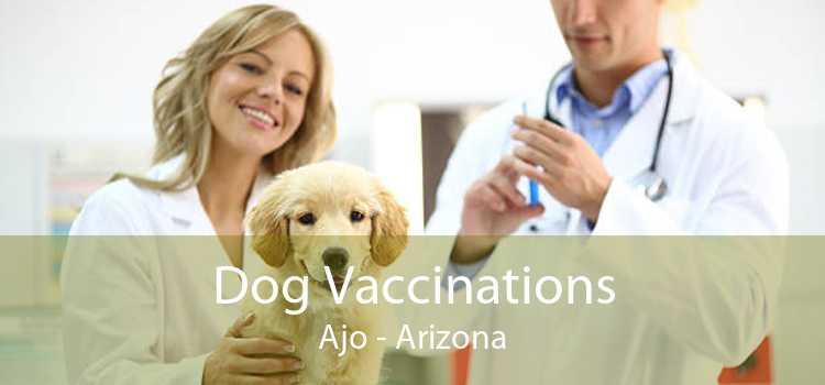 Dog Vaccinations Ajo - Arizona