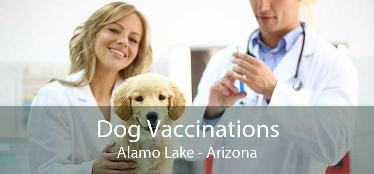 Dog Vaccinations Alamo Lake - Arizona