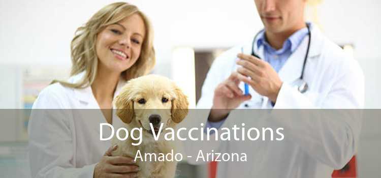 Dog Vaccinations Amado - Arizona