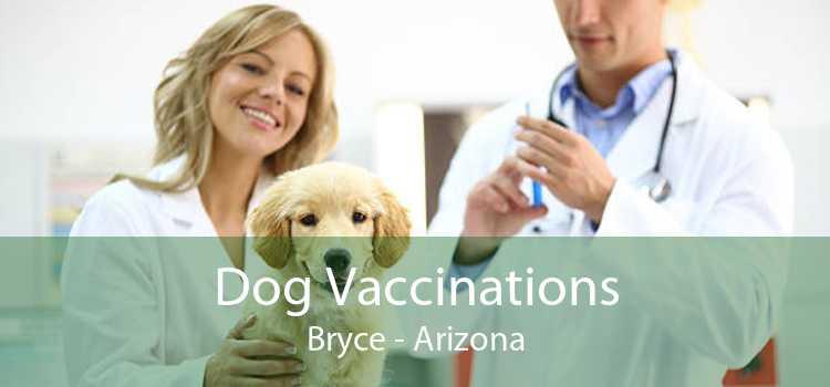 Dog Vaccinations Bryce - Arizona