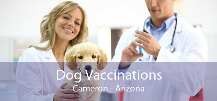 Dog Vaccinations Cameron - Arizona