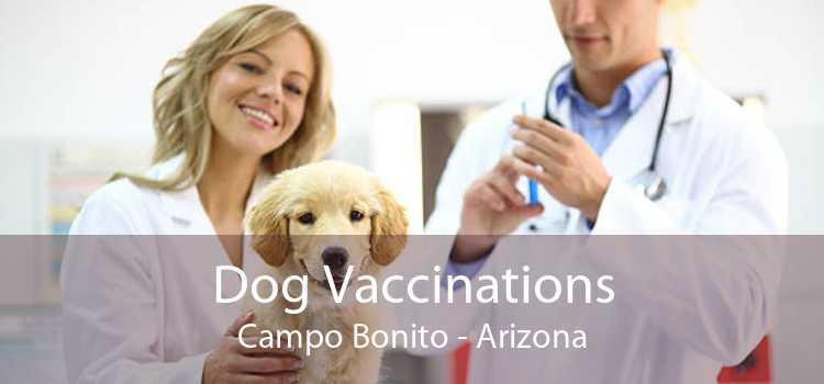 Dog Vaccinations Campo Bonito - Arizona
