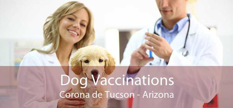 Dog Vaccinations Corona de Tucson - Arizona