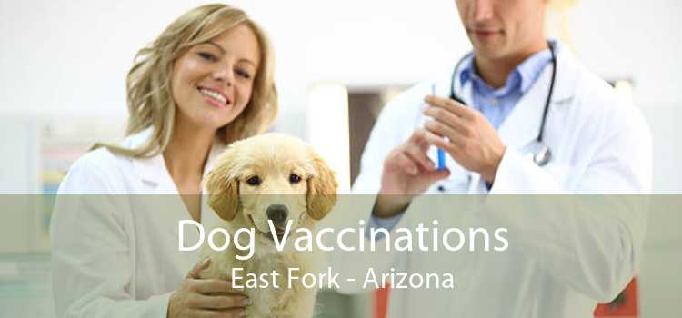 Dog Vaccinations East Fork - Arizona