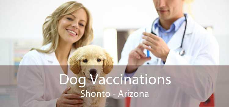 Dog Vaccinations Shonto - Arizona