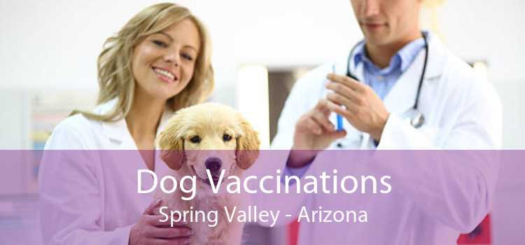 Dog Vaccinations Spring Valley - Arizona